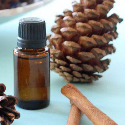 etheria-elaia--pine-cones